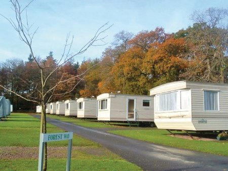 Forest Glade Holiday Park in Cullompton is a family holiday park in Devon