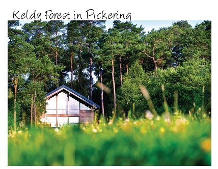 Lodges and Log cabins at Keldy Forest, Pickering - with hot tub