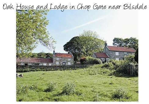 Explore the North York Moors National Park during your holiday at Oak House and Lodge, near Bilsdale
